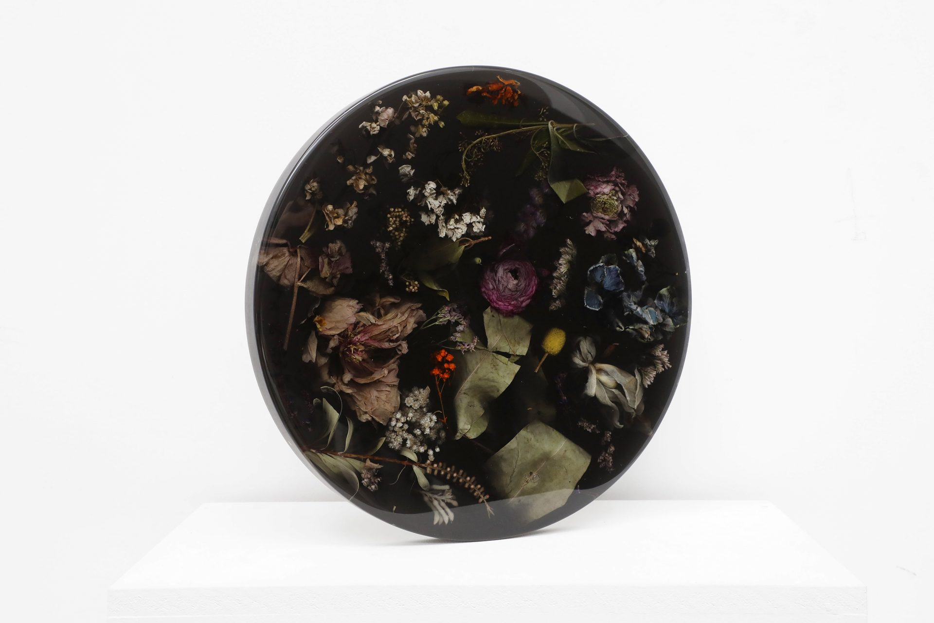 Flora Temporaria Black (polished)